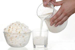 Typer av patogene bakterier i melk