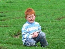 Homøopatiske midler for autisme