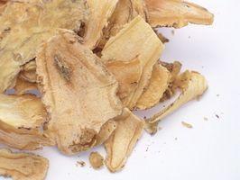Sun Ginseng behandling for lungekreft