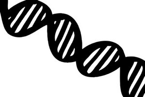 Hvorfor er kaldt Alkohol brukes i DNA-tester?