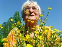 Post-menopause jern kosttilskudd