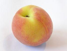 Hva er årsaken til Lille mørke flekker på Peaches Fra en Peach Tree?