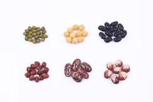 Liste over Slow & Raske karbohydrater