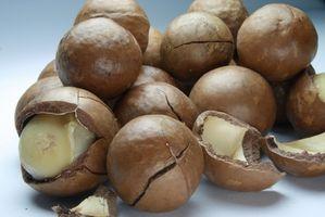 Hva er fordelene med Macadamia Oil?