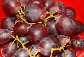 Hva er fordelene med quercetin Dilhydrate?