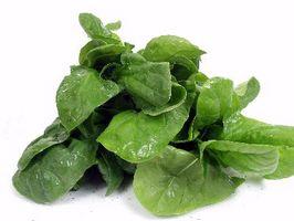 Kalsium Oxalate Diet