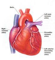 Hvordan virker hjertesykdom påvirke hvordan hjertet fungerer?