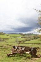 Hva er de skadelige effekter forårsaket av et landlig miljø?