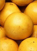 Helsemessige fordeler av grapefrukt
