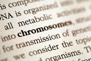 Hvorfor er karyotyping en stor aktivitet i medisinsk genetikk?