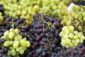 Hvilke vitaminer er i druer?