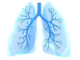Astma Symptomer hos barn