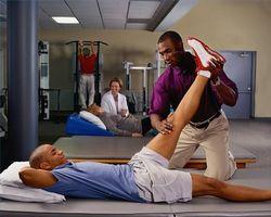 hva tjener en fysioterapeut