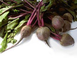 Næringsstoffer og vitaminer i Beets