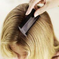 Teknikker for Gre gjennom håret for å fjerne lus og luseegg