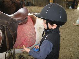 Hva er Equine Therapy?