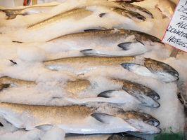 Hva er fordelene med EPA i fiskeolje?