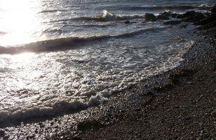 Hva er saltvann Bra for?