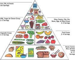 Hva er maten pyramide og hvordan er den brukt?