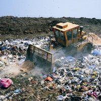 Hva er Environmental Persistence?