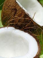 Kan du bruke Coconut Oil i en dyp Fryer?