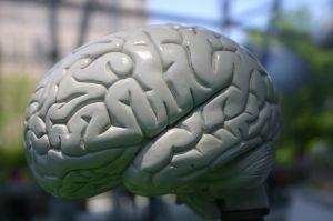 Lidelser som forårsaker hukommelsestap