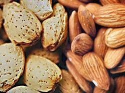 Tegn og symptomer på mutter allergi