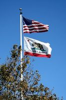 Californias lov & HIV Positive
