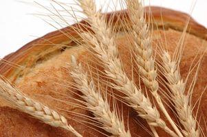 Hva er fordelene grovbrød?