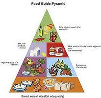 Grupper av maten guide pyramide