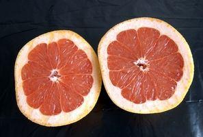 Grapefruktkjerneekstrakt for barn
