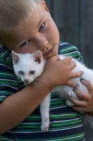 Hva Zoonotiske Sykdommer spredte seg fra Pet Dyr til mennesker?