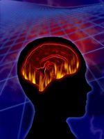 Hva er effekten av Serotonin & noradrenalinnivåene?