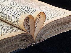 Hvordan bruke urter av Bibelen