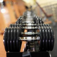 Ernæring for intens trening