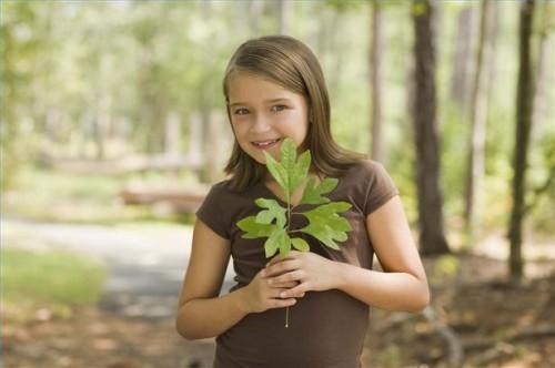 Hvordan å gjøre Plant Identifikasjon trygt og effektivt