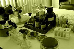 DNA-teknologi i Forensics og Etikk