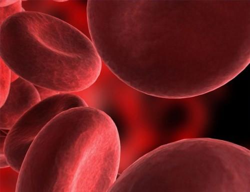 Blodtransfusjon System Information