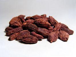 Indiske helbredende urter
