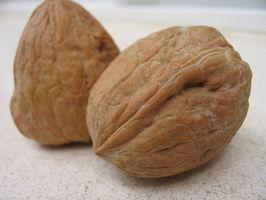 Beta-sitosterol og kolesterolnivå