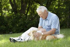 Slik Spot Alzheimers Disease Tidlige symptomer