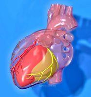 Alkohol og hjertesykdom