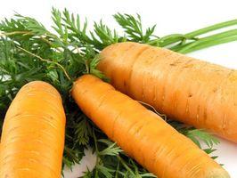 Hvordan detox fra en overdose av vitamin A