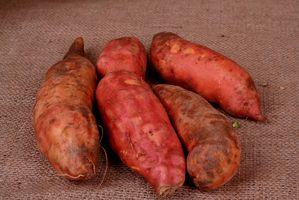 Hvordan å miste vekt med poteter og Protein