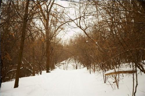 Hvordan håndtere Psoriasis i vinter
