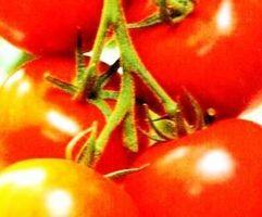 Hvorfor Do tomat-baserte matvarer forårsake halsbrann?