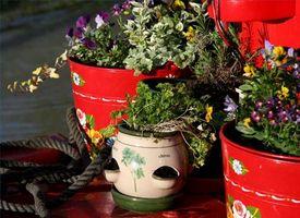 Bruker for kinesiske urter
