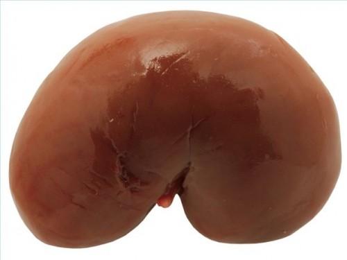 Hvordan diagnostisere Albuminuria