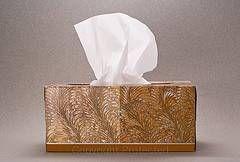 Nasal Allergi Symptomer