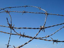 Mental Helse og behandling av innsatte